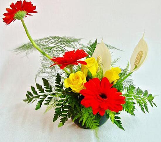 Cắm hoa 20 tháng 11