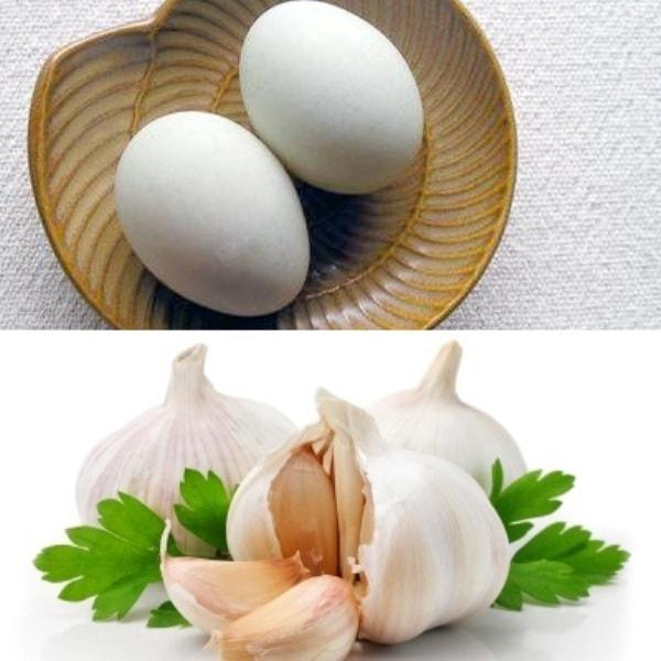 Tỏi và trứng vịt kỵ nhau