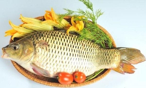 có bầu mấy tháng thì ăn cháo cá chép