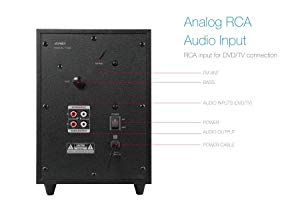Analog RCA Audio input