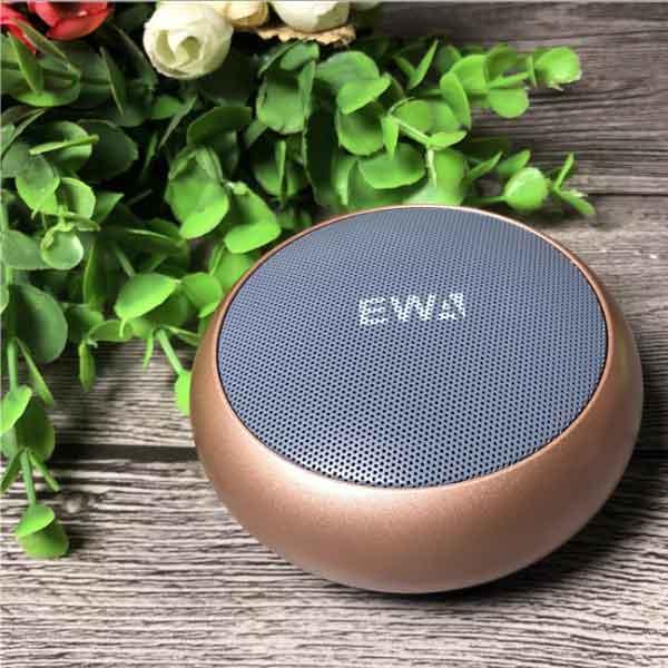 Loa di động EWA A110
