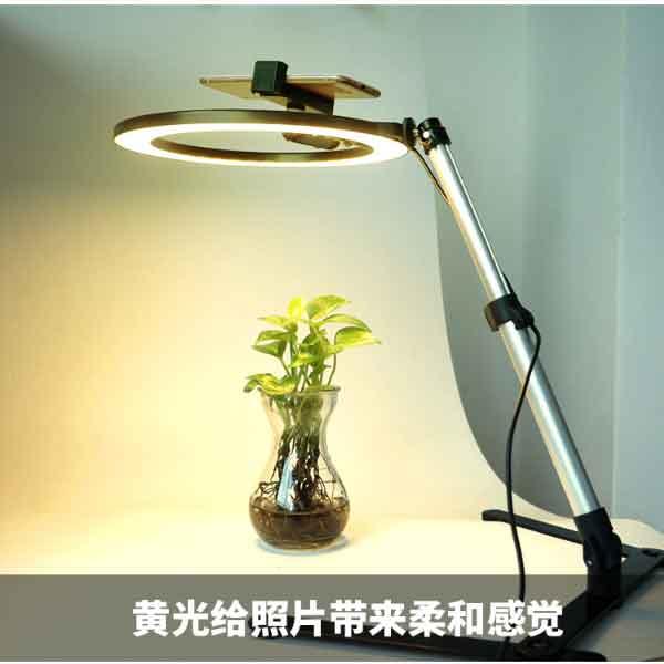 Đèn livestream 26 cm